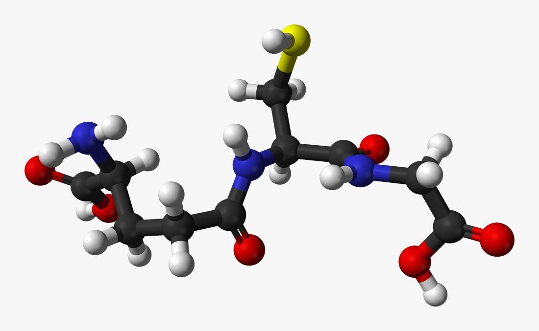 Glutatyon hayatımıza yaşlanma karşıtı bir antioksidan olarak girdi. Vücudumuzda doğal olarak bulunan ve üretilen Glutatyon yaşlanma, dış faktörler ve sağlıksız beslenmeye bağlı olarak zaman içerisinde azalıyor.